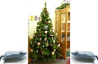 De Wiehnachtsboom. En lütt Märken